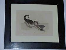 Gottfried Mind Schweiz Katze mit Maus, Farbradierung Reyher Berlin um 1861