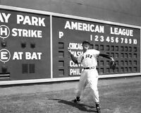 Boston Red Sox TED WILLIAMS @ Fenway Park Glossy 8x10 Photo Print Poster