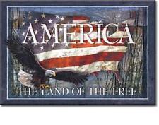 America Magnet Magnetschild Amerika Reiseandenken original aus USA