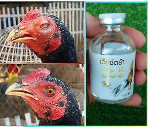 Extra Sure Vitamin Healthy Rooster Chicken Cock Best of Supplement Food 50cc