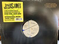 "JESUS JONES RIGHT HERE RIGHT NOW REMIX 12"" 1991 SBK 19734 DJ PROMO"