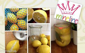 Weck Tupen-Glas 1062ml Nr.745 Zubehör Einmachglas Obst Gemüse Gurkenglas Backen
