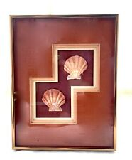 Vintage Framed & Matted Pair of Natural Sea Shell/Lion's Paw Scallops - Nautical