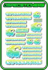 CAPRICORN RC STICKER A5 LAB 1/8 F1 1/10 TESLA ELECTRIC NITRO CAR HARD BLUE YEL W