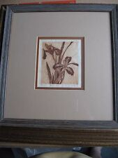 """WILD IRIS"" BLOCK PRINT LINDA EDWARDS SIGNED #13 /100 ORIGINAL PRINT 1980"