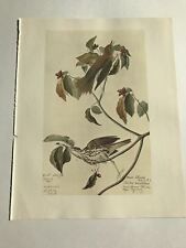 John James Audubon Bookplate Plate 279 Bird Print 1966 Wood Thrush