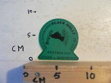 STICKER,DECAL BLACK MOLLY VIS FISH   WARNSVELD FM 100,5 ZENDAMATEUR PIRAAT
