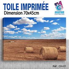 70x45cm TOILE IMPRIMEE- TABLEAU DECORATION MURALE- PAYSAGE CHAMPS CH-01