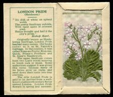 More details for kensitas woven silk flowers, 1935, small, 2nd series, london pride, #35