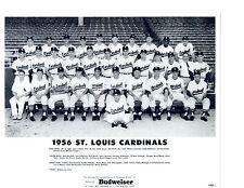 1956 ST. LOUIS CARDINALS 8X10 TEAM PHOTO MUSIAL MIZELL DARK  BASEBALL