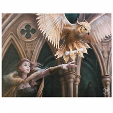 Owl Messenger Anne Stokes Wall Plaque Fantasy Art Magical Bird Canvas Picture