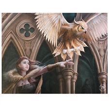 Hibou Messager Anne Stokes Plaque Murale Fantaisie Art Magique Oiseau