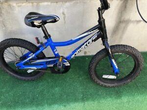 "Giant Animator 16"" Kid's Bike Single Speed Coaster Brake Training Wheels"