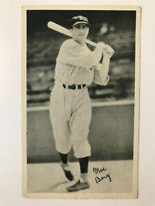 1936 National Chicle R313 Fine Pen  Moe Berg
