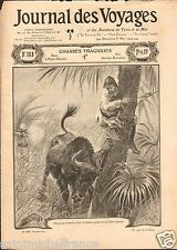 AFRIQUE CHASSE BUFFALO BUFFLE HUNTING CHASSEURS 1904 ILLUSTRATION ANTIQUE PRINT
