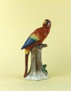 Antique Porcelain German Figure of a Parrot by Dresden Sitzendorf