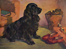 COCKER SPANIEL CHARMING DOG GREETINGS NOTE CARD DOG SITS BY MASTERS SLIPPERS
