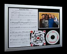 RED HOT CHILI PEPPERS Suck My Kiss LTD Nod CD GALLERY QUALITY FRAMED DISPLAY!!