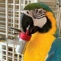 The Goodie Gadget Foraging Puzzle Parrot African Grey Cockatoo Macaw Caique Toy
