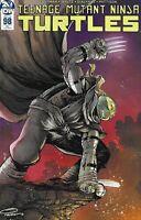 Teenage Mutant Ninja Turtles Comic Issue 98 Retailer Incentive Variant Nichols .