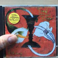 TOAD THE WET SPROCKET - dulcinea ~ Musik Rock ROP Album CD