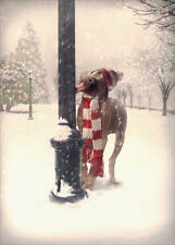 Dog Tongue Stuck on Pole - Avanti Funny Box of 10 Christmas Cards