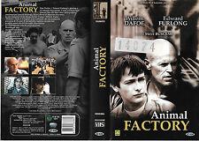 ANIMAL FACTORY (2000) vhs ex noleggio