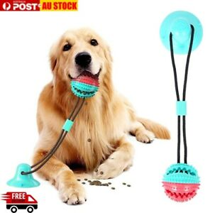 Pet Molar Biting Multifunction Rubber Chewing Ball Toy With Suction Cup Play AU