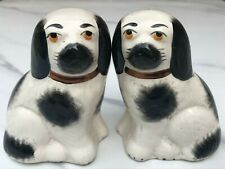 More details for pair of small vintage staffordshire black and white spaniel dogs - lovely