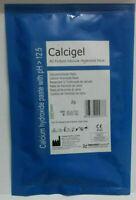 Prevest Denpro Calcigel All Purpose Calcium Hydroxide Paste 2gm Dental