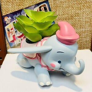 Disney Parks Jerrod Maruyama Dumbo The Flying Elephant Succulent