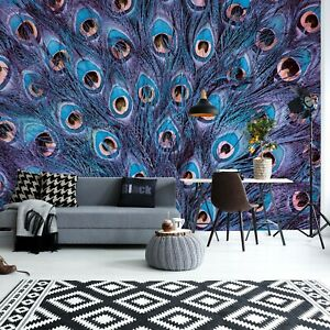Peacock feathers photo wallpaper 312x219cm adults & kids bedroom wall mural