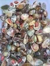 Very large Ghost Phantom Quartz - Tumbled Stone Pendant Healing Crystal 13-18pc