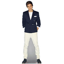 OFFICIAL ONE DIRECTION STANDEE LIFESIZE LIAM PAYNE STANDUP CUTOUT CARDBOARD 1D