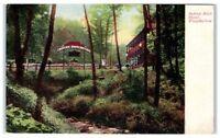 Early 1900s Indian Rock Hotel, Wissahickon Creek, Philadelphia, PA Postcard