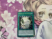 1x Euro - Legacy of the Duelist - DUSA-EN024 - Ultra Rare - 1st Edition YuGiOh