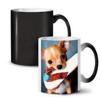 Chihuahua Photo NEW Colour Changing Tea Coffee Mug 11 oz | Wellcoda