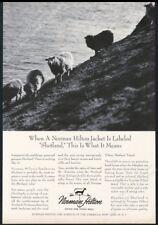 1964 Shetland sheep photo Norman Hilton fashion vintage print ad