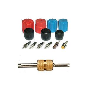 Santech Industries Automobile A/C System Caps & Valves Kit + Removal tool MT2903