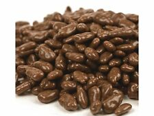 SweetGourmet Milk Chocolate Covered Sunflower Seeds - 2LB FREE SHIPPING!