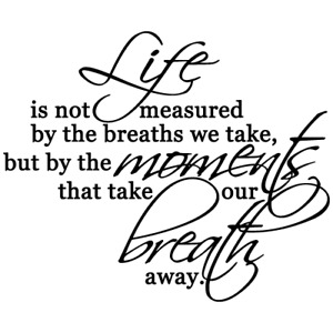 LIFE IS NOT MEASURED QUOTE VINYL WALL DECAL STICKER ART-REMOVABLE HOME DECOR