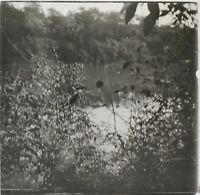 Africa Chasse Foto Q61 Placca Lente Stereo Positive Vintage Ca 1920
