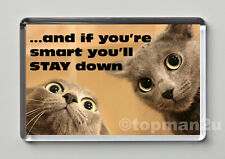 New, Funny Cats, Quality Fridge Magnet, cute - If You're Smart You'll STAY Down
