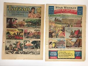 Tarzan Sunday Pages, 1953, Bob Lubbers Art, 39 Pages