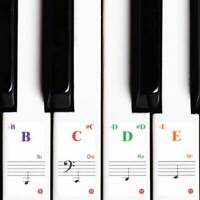 Transparent Music Piano Learner Stickers Note Keyboard 88/61/54/49/37/32Key