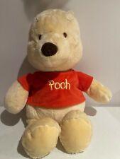 Disney Winnie the Pooh Stuffed Bear