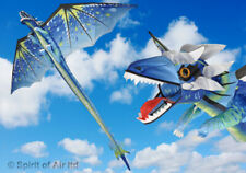Kite Spirit of Air Classical Ice Dragon 6ft 195cm Wingspan Single Line 3D Beach
