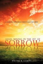 Gold Mining in the Pit of Sorrow (Paperback or Softback)