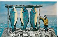 VINTAGE FISHING THEMED POSTCARD THIS IS THE BAIT