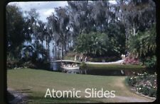 1953 kodachrome photo slide  Florida #1  Cypress Gardens    FL47